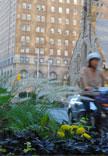 Bloor Street Transformation